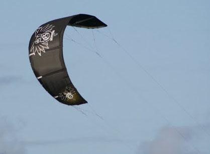 Griffin 2010 kite